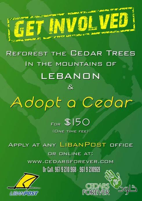 Adopt a Cedar